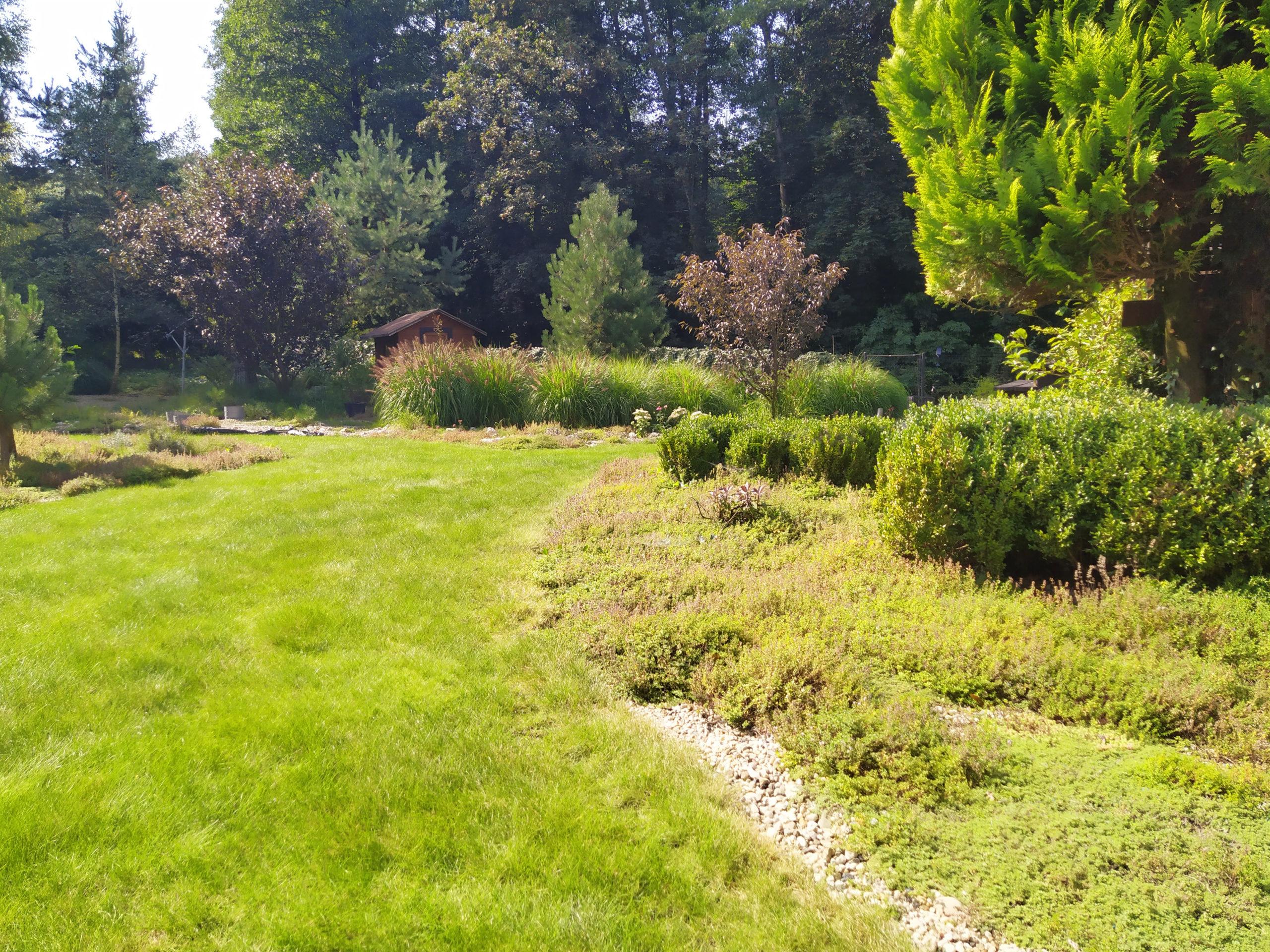 Dobierzemy odpowiedni trawnik do twojego ogrodu