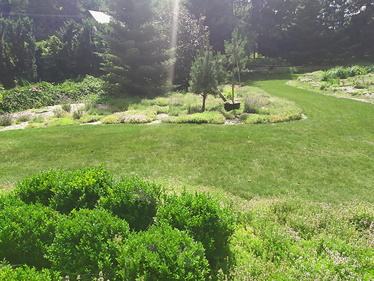 Trawnik serce ogrodu